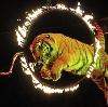 Цирки в Исетском